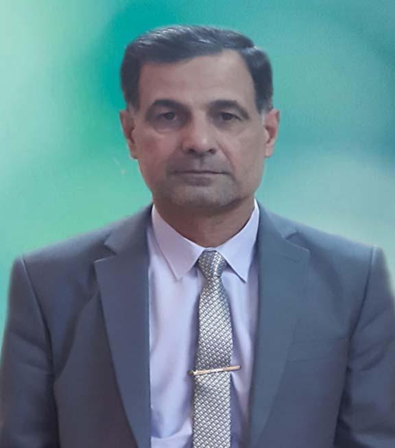 Najah Mahdi Alwan Alsafy